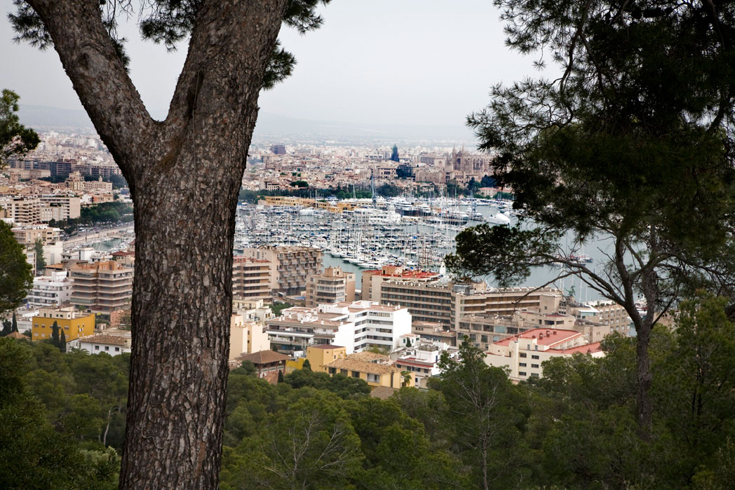 Ferie Palma de Mallorca