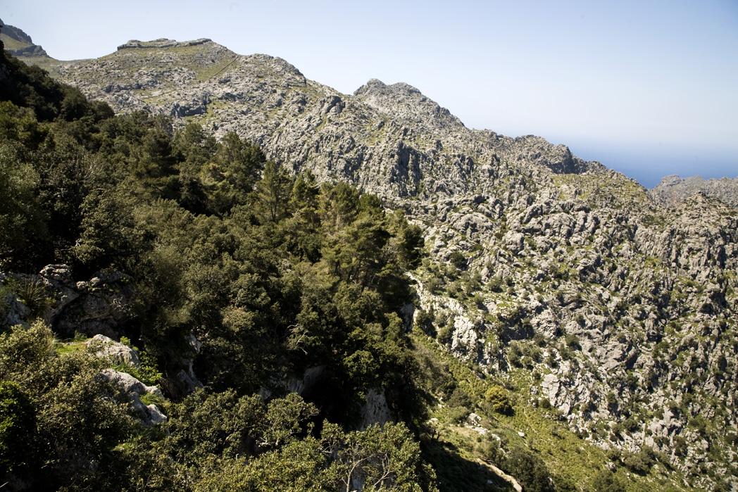 Mallorca Vandreture Pa Vandring I Bjergene Pa Mallorca Laes Guiden